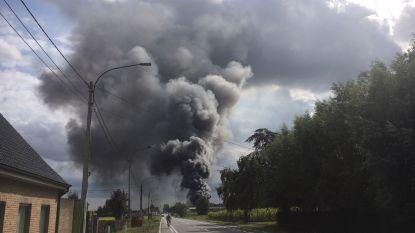 Uitslaande bedrijfsbrand veroorzaakt grote rookpluim boven Pittem