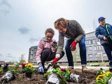 Nieuwe beweegtuin bij Deventer Ziekenhuis geopend met openluchtconcert