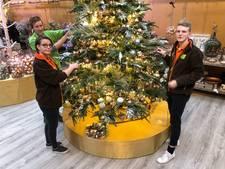 Een pracht kerstboom ligt ergens tussen de 50 en 8000 euro