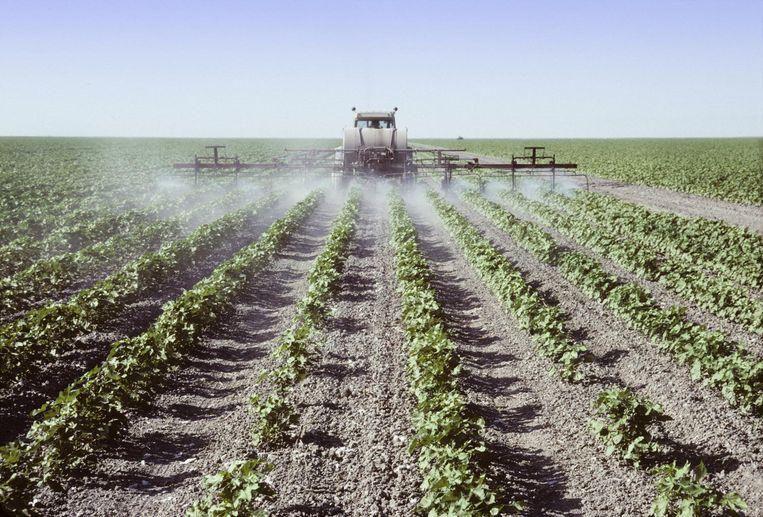 Het gebruik van de pesticide DDT is al sinds 1974 verboden