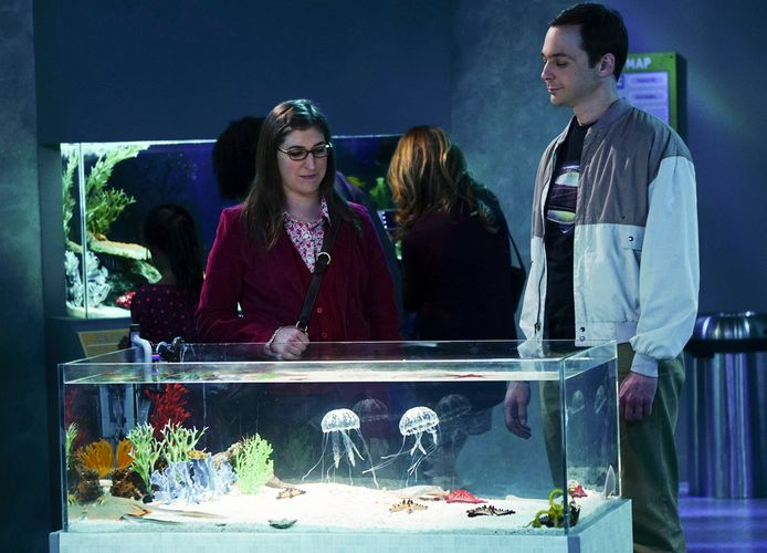 Jim Parsons als Sheldon en Mayim Bialik als Amy in The Big Bang Theory.