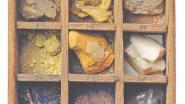 Nederlands Rijksmuseum ontdekt uranium in geheime laden van 18de-eeuwse miniatuurapotheek