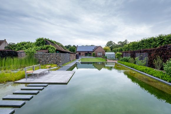 De zwemvijver in de tuin van de familie Vandewalle in Liezele