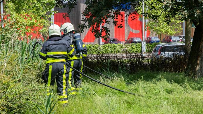 Brandweerlieden gaan het brandje in Roosendaal te lijf.