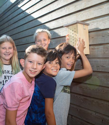 Stichting zoekt gastvrije schoolpleinen voor bijenhotels