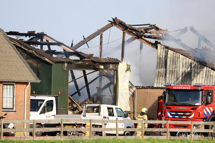- Bijna 1500 varkens zijn om het leven gekomen als gevolg van een zeer grote stalbrand in Streefkerk (Zuid-Holland).
