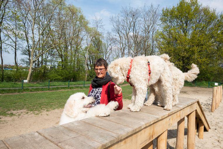 Eerder dit jaar werd in Deurne een hondenspeeltuin geopend.