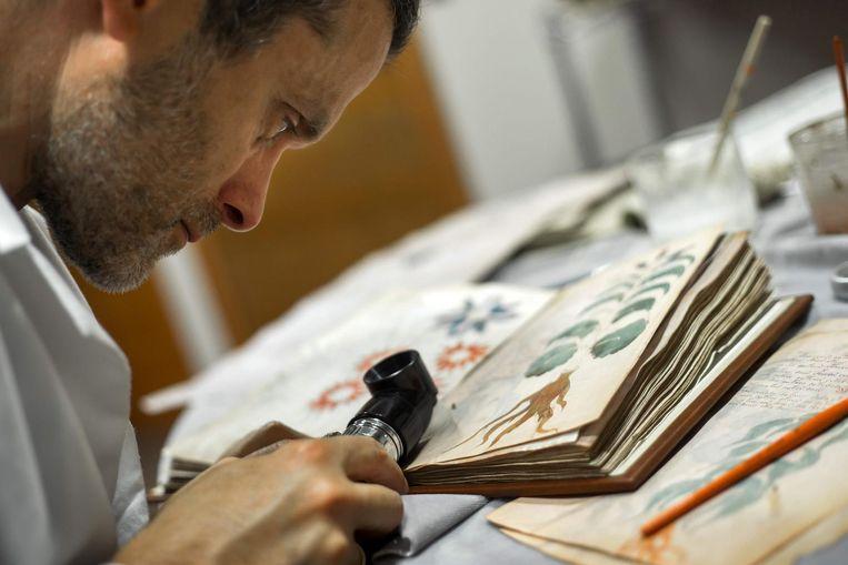 Het Voynich Manuscript werd jarenlang bestudeerd. Nu beweert een academicus aan de University of Bristol dat hij de code ontcijferde.