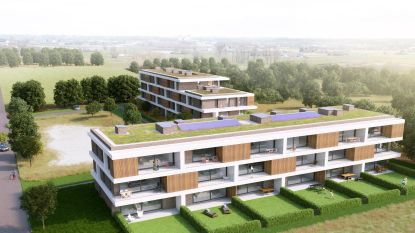 Ontwikkelaar plant vijf luxueuze urban villa's in Spreeuwenhoek
