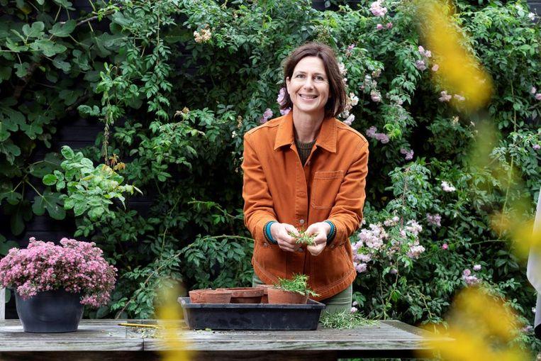 Het is nu hét moment om een moestuin te beginnen, je eigen plantenvoeding te brouwen en zelf lavendel te kweken.