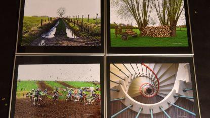 Galmaardse kunstenaars stellen hun werken tentoon