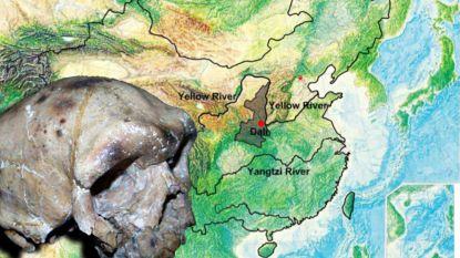 Wetenschappers vinden schedel die menselijke geschiedenis helemaal kan herschrijven