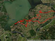 Flevolandse jonge zeearend op ontdekkingsreis naar Kampen