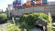 Begraafplaats Kortrijk-Dutsel oogt erg verwilderd, maar is geen prioriteit voor gemeente