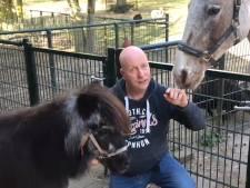Eerste dieren buurtboerderij De Ramshorst in Zwolle weg: 'Dit doet pijn'