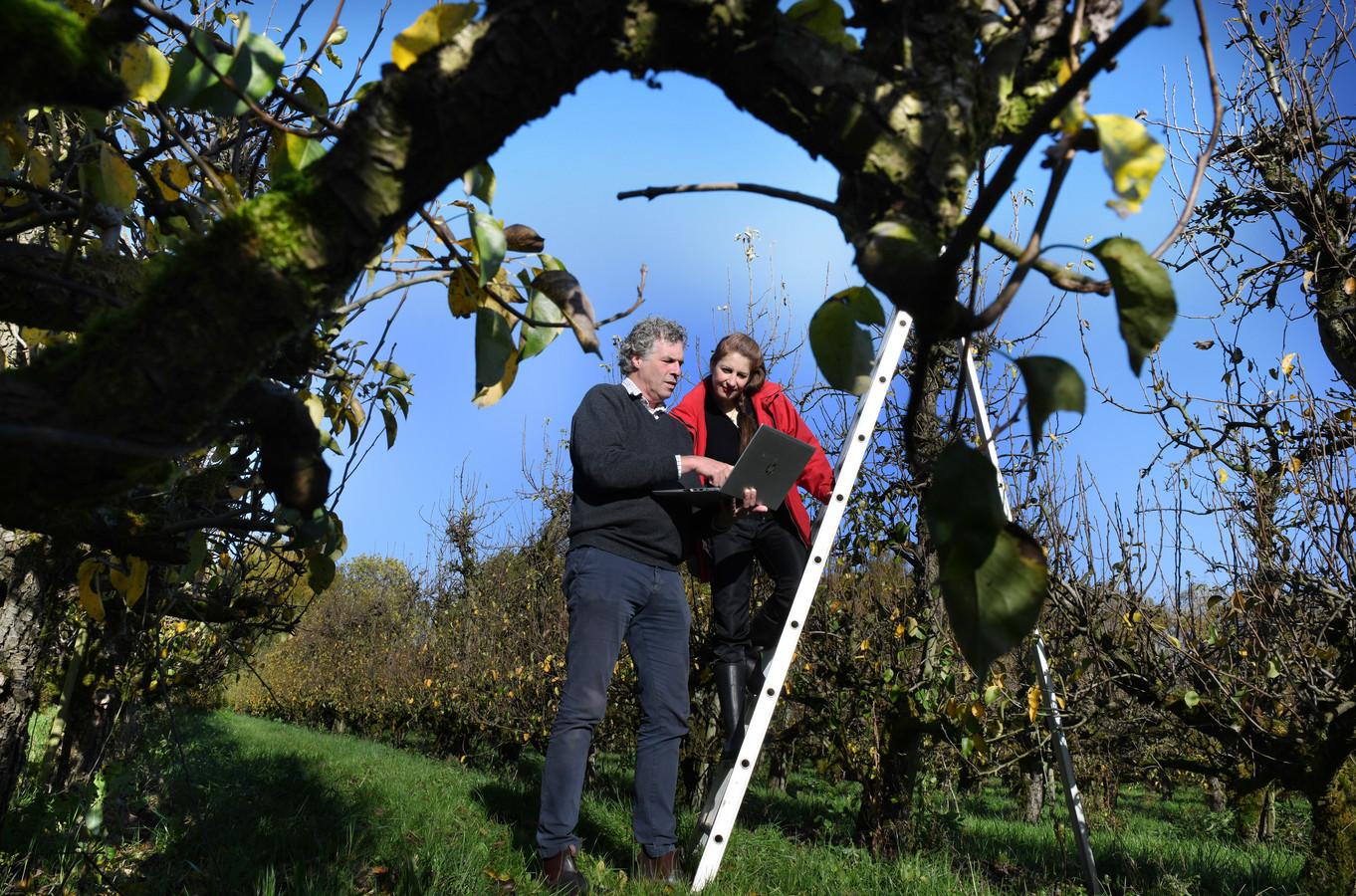 Belle van Dijk met onderzoeker Gijs van Heemstra in de boomgaard waar het onderzoek gehouden gaat worden met zonnepanelen boven de perenbomen.