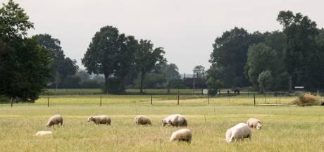Nunspeter blijft strijden tegen woningbouw in 't Hul Noord: 'We staan nu juist sterker'