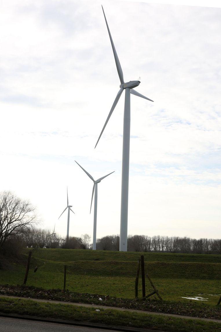 De turbines van Eoly en Ecopower langs het Kanaal Brussel-Charleroi.