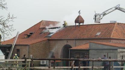 Dak van gerenoveerde hoeve gaat in vlammen op