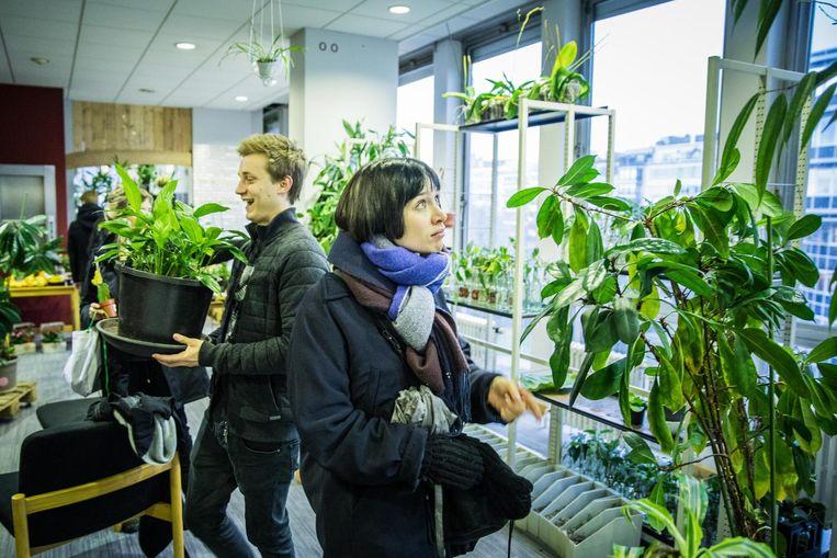 In NEST konden bezoekers voor een vrije bijdrage 'verwaarloosde en overbodige kamerplanten' adopteren.