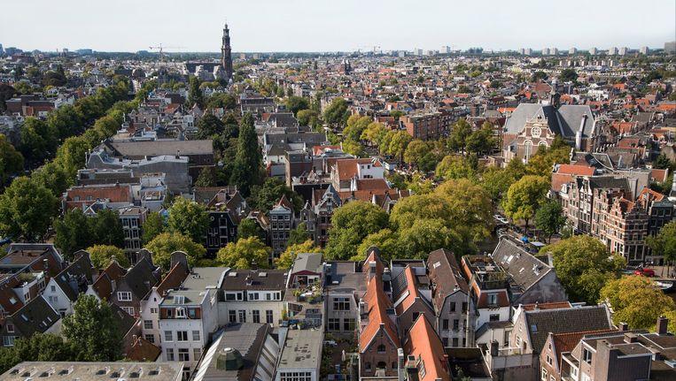 Honderd huishoudens gaan voor een honderd keer beter uitzicht Beeld Rooftop Revolution