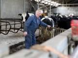 Gerrit Netjes is de eerste boer die bypassgebied verlaat