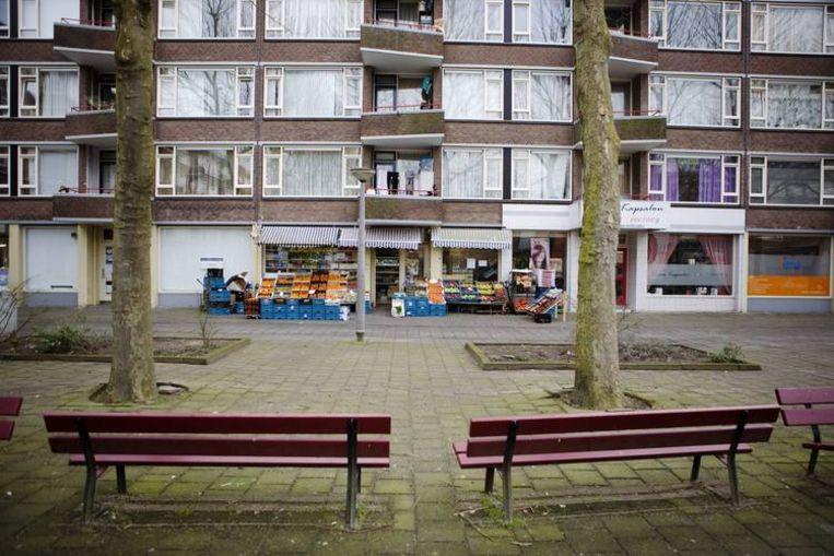 De eerste flats worden mogelijk eind dit jaar gesloopt. Rond 2018 moet het gebied klaar zijn. Foto Ruud van Zwet Beeld