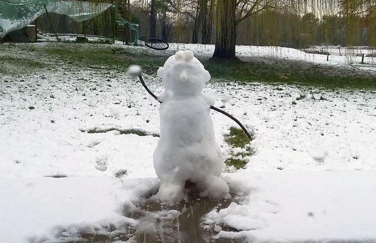 Dit moet zo ongeveer de mooiste sneeuwman in onze regio zijn...