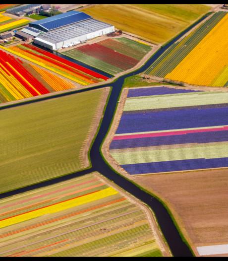 Van boven is Nederland vandaag op z'n allermooist