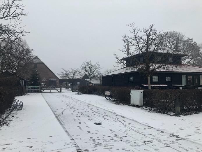Sneeuw op een boerderij in Arnhem