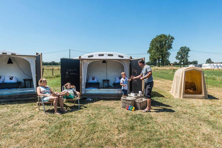 Slapen op de boerderij in een kalveriglo kan vanaf juni in Herenthout