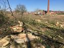Het vroegere Van Besouw-terrein na de bomenkap.