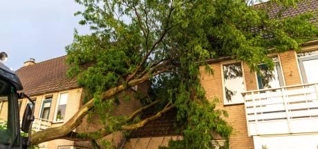 Noodweer treft Brabant hard: wateroverlast, omgewaaide bomen, blikseminslagen