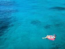 Une microalgue irrite les baigneurs dans les Canaries