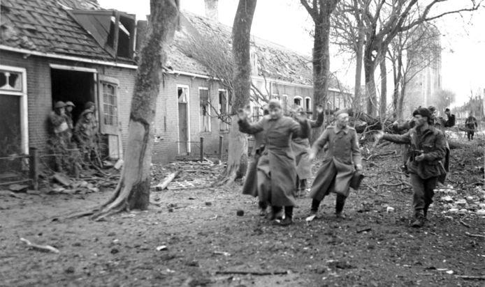 Westkapelle, 1 november 1944: Duitse krijgsgevangenen in Westkapelle worden door commando's van 41 Royal Marine Commando's naar het strand gedreven. Keuzefoto Commissaris van de Koning van Zeeland, Han Polman. foto Sergeant C. Crocker, ZB, Beeldbank Zeeland