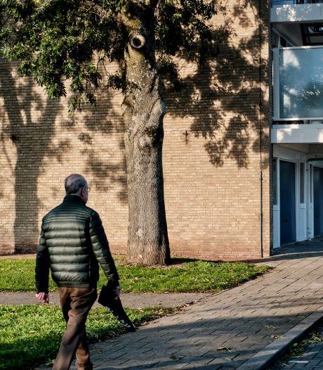 Oeps! Aannemer zaagt per ongeluk twee bomen om bij Sliedrechtse flat: 'We herplanten er zestien'