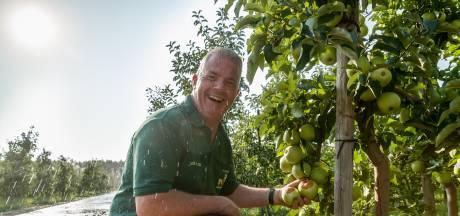 De appels verbranden aan de bomen: historisch lage oogst