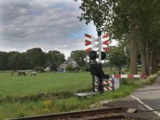 Windmolens langs A12 bij Zeist nog geen gelopen race: 'We voelen onze verantwoordelijkheid'