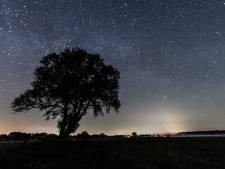 Politiek Dalfsen wil 'aardedonkere sterrenzone' om lichtvervuiling tegen te gaan en de nacht te koesteren