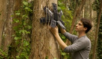 Met een oude telefoon kan het regenwoud beschermd worden