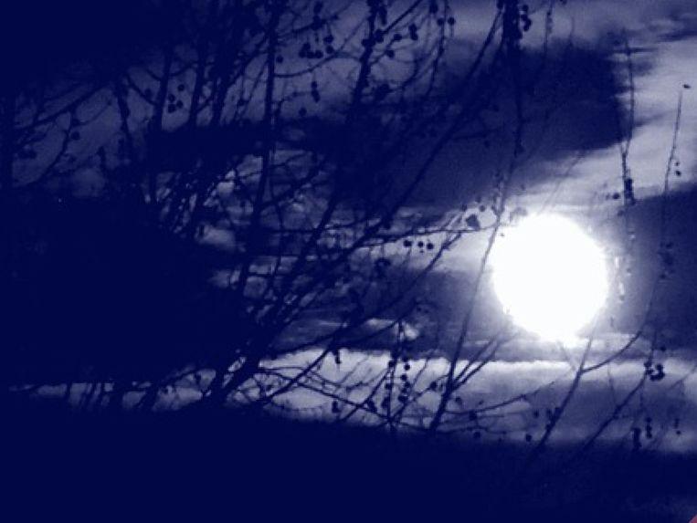 De Nacht van de Duisternis in Willebroek