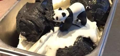 Panda's hebben eigen ijs in Rhenense salon