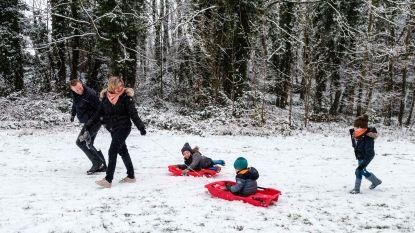 VIDEO. Sneeuwpret op dun wit tapijt op de Beukenberg