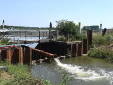 Waterschap Aa en Maas knokt met man en macht tegen de droogte
