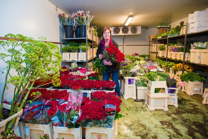 Beeld van een paar jaar geleden bij bloemisterij Labberton. Nellie Labberton in de weer met rode rozen, in de aanloop naar moederdag.