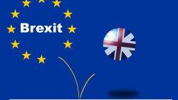 """""""We moeten meer werken door brexit"""": parlementsleden vragen hogere vergoedingen"""