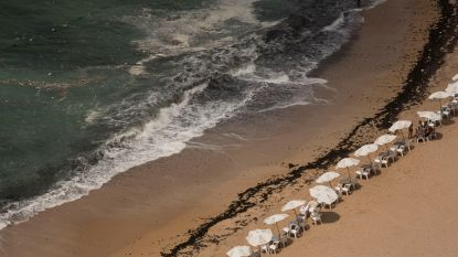 Zeker 11 mensen verdrinken in Egypte bij redden van tienerjongen