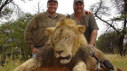 """Journalist onthult hoe clubs van rijke trofeejagers zelfs natuurorganisaties infiltreren: """"Apetrots dat ze 6.000 wilde dieren afschoten"""""""