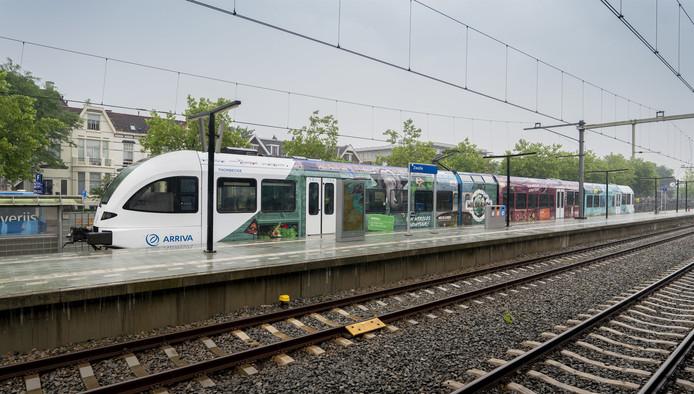 De speciale Wildlandstrein die tussen Zwolle en Emmen rijdt.