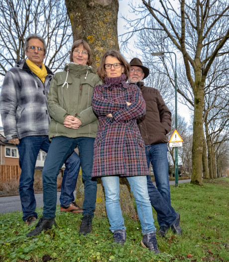 Bewoners in de bres voor bomen op Pastoor Kannelaan in Wilnis